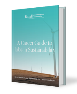 866263_-Christina- -Bard- eBook - A Career Guide to Jobs in Sustainability-mockup_101120-2