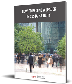 Leader in Sustainability Guide Cover