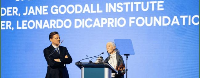LeoDiCaprio_JaneGoodall-1